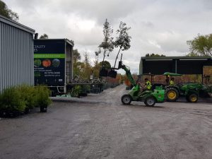 Speciality Trees Avant 745 Articulated Loader